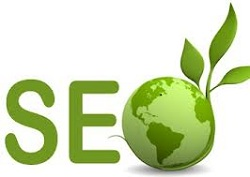 How to Hire an Organic SEO Service Provider