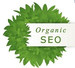 6 INDISPENSABLE TIPS FOR ORGANIC SEARCH ENGINE OPTIMIZATION (SEO)