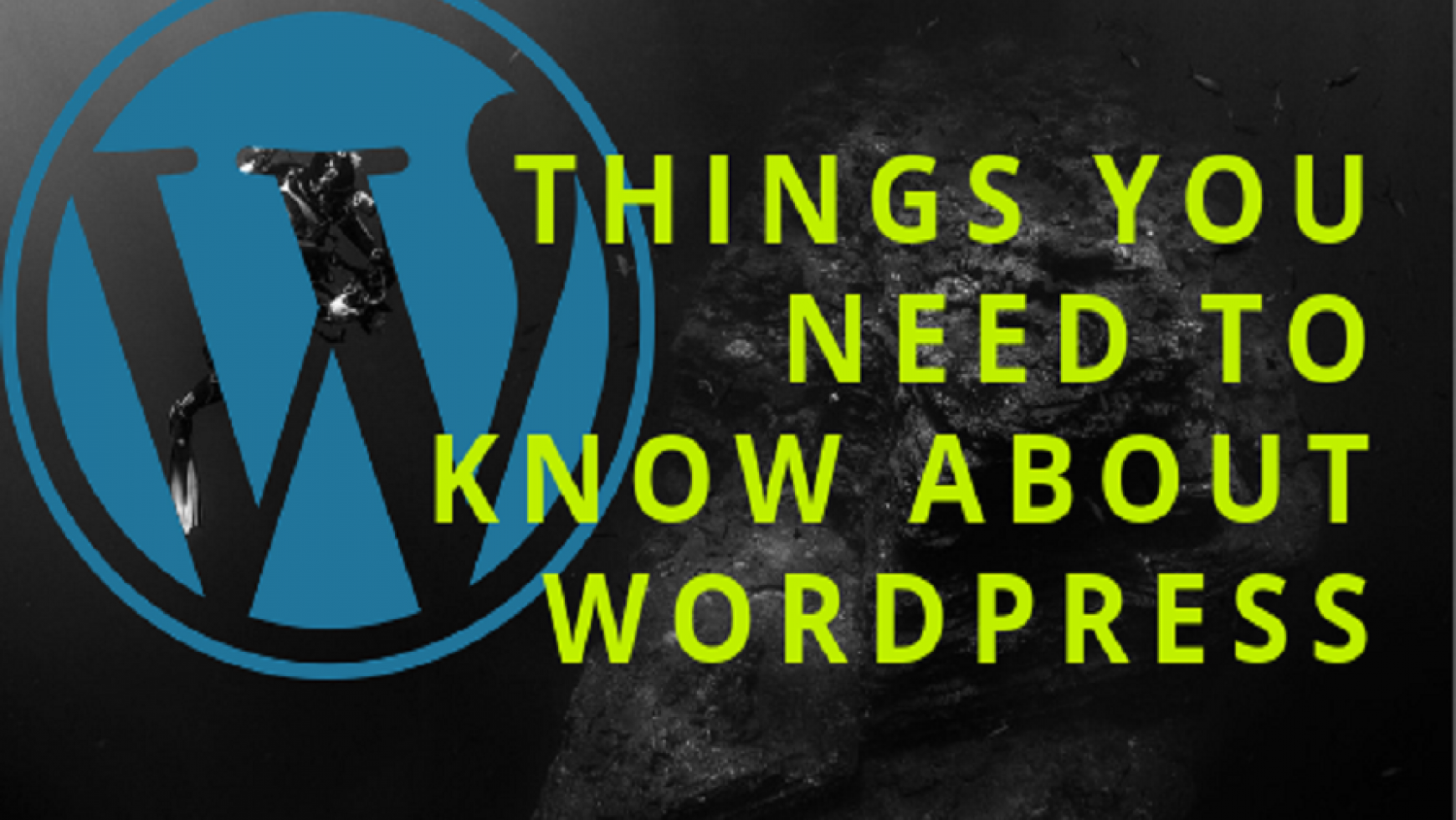 Things You Need To Know About WordPress