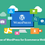 Why Use WordPress for Ecommerce website and How to Evaluate it