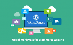 Use WordPress for Ecommerce website